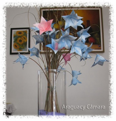 Foto: Araguacy Camara